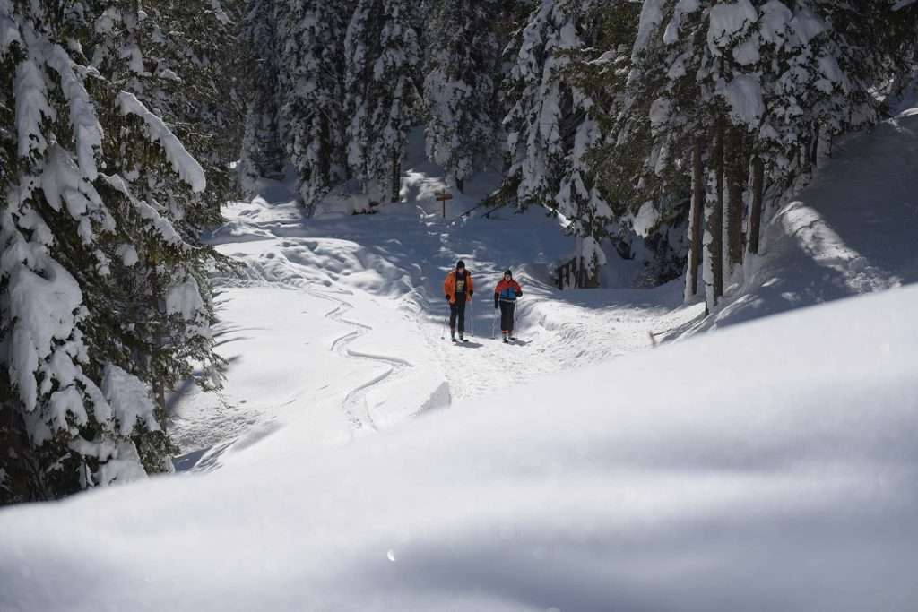 alpinismo-malga-ra-stua