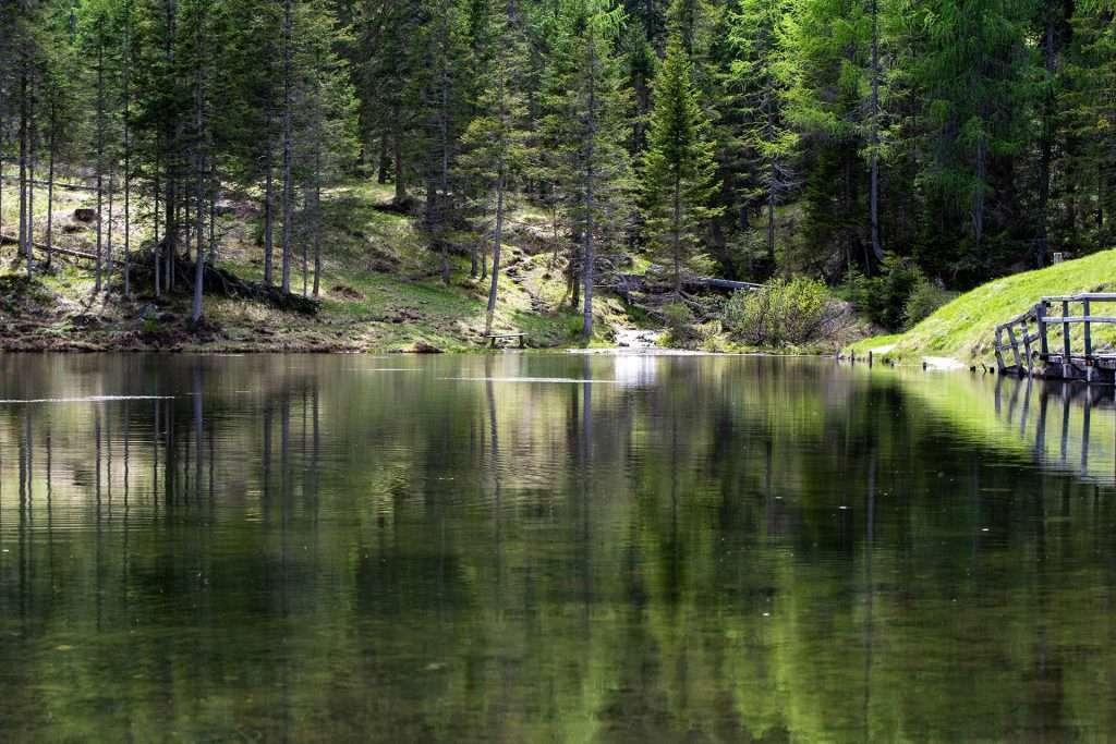 famiglie-lago-pianozes
