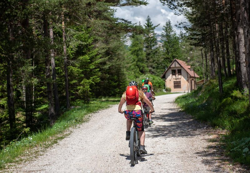 noleggio-mountain-bike-1
